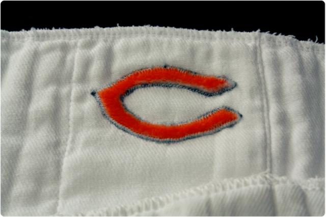 burp cloth bears