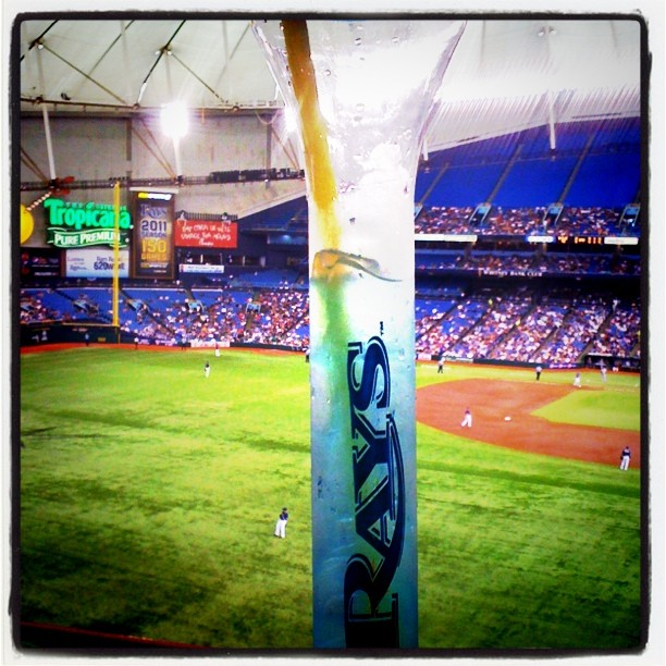 rays game