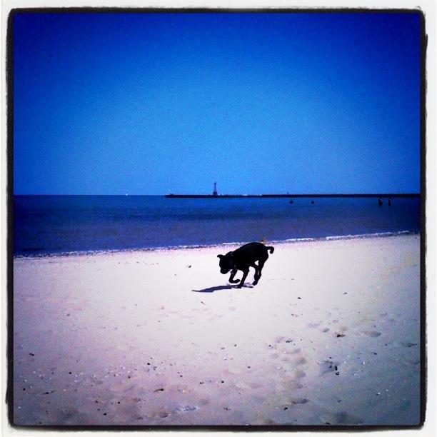 beck at beach