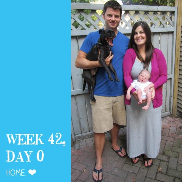 week 41/42
