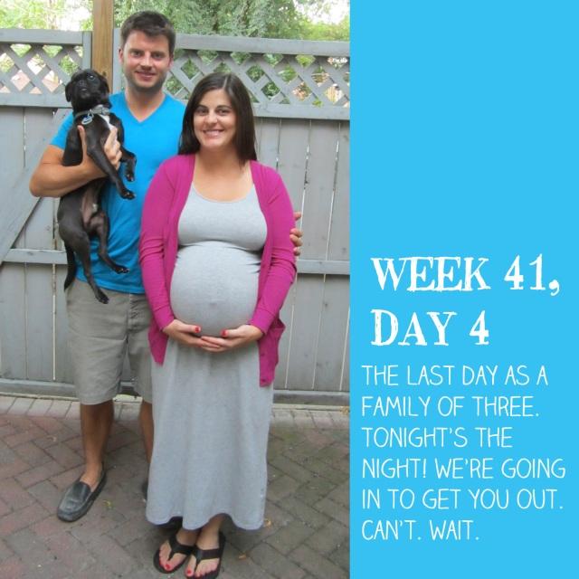 week 41